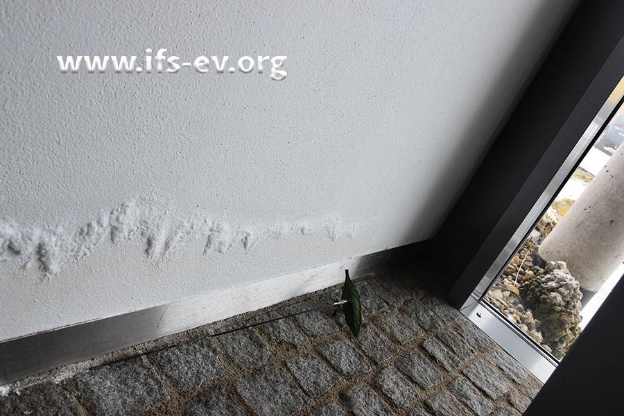 Salzausblühungen an den Wänden