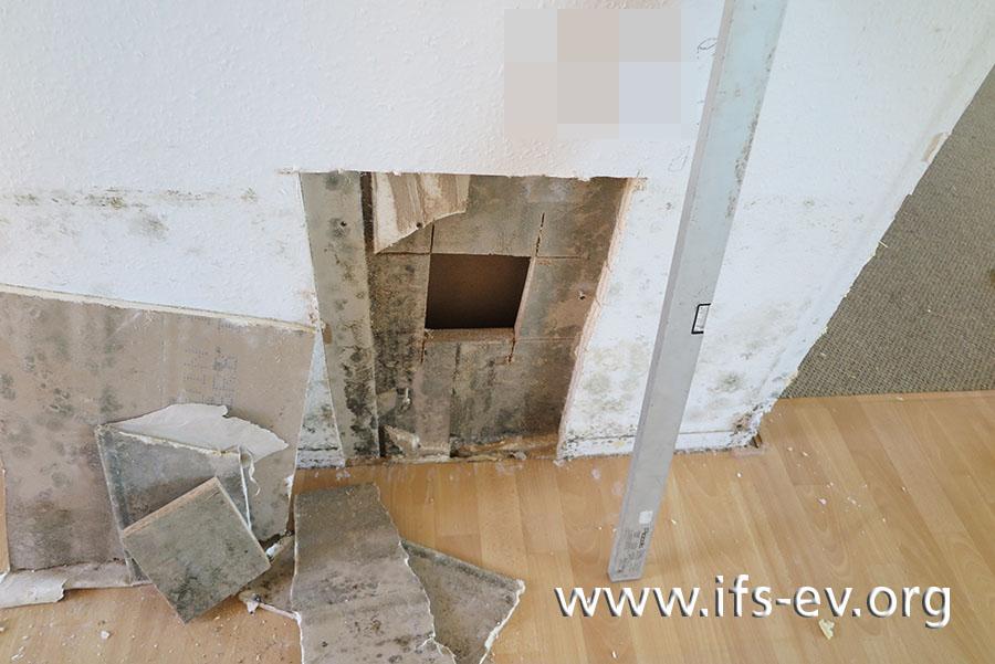 An den unteren Wandbereichen und im Aufbau der geöffneten Wand ist Schimmelbefall zu sehen.