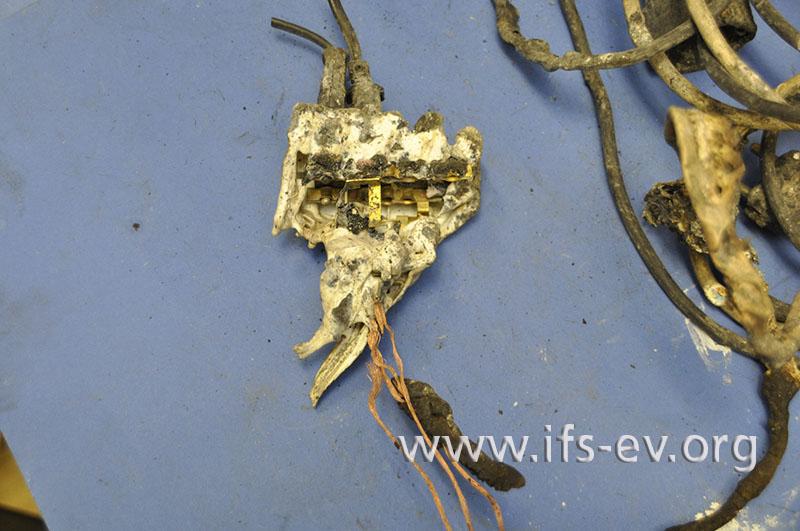 Die Kunststoffgehäuse des Euro-Flachsteckerverteilers und der Buchse sind teilweise zerstört.