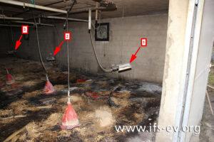 Blick in den brandbetroffenen Stall: Drei der vier dort aufgehängten Aufzuchtstrahler sind auf dem Bild zu sehen.