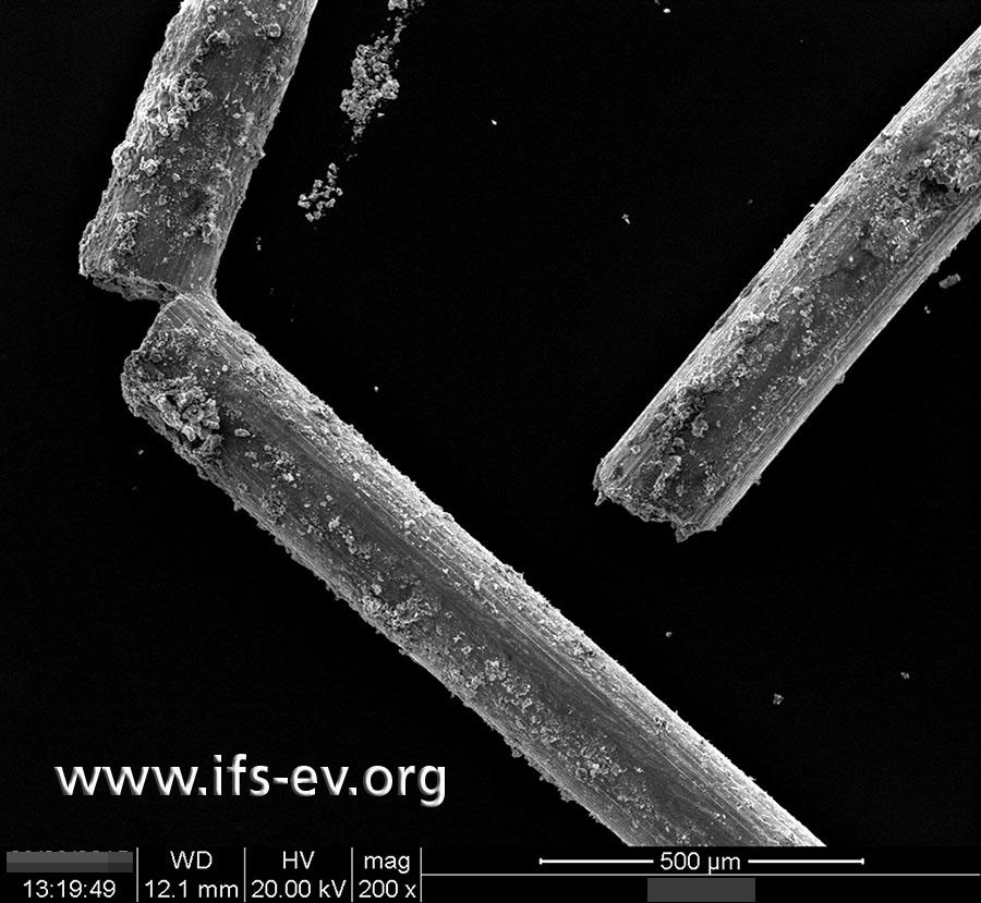 Elektronenmikroskopische Aufnahme gebrochener Drähte