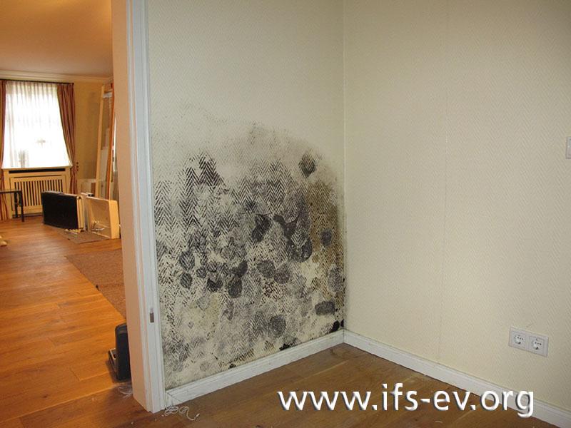 Massiver Schimmelpilzbefall an der Wand vom Schlafzimmer zur Diele.