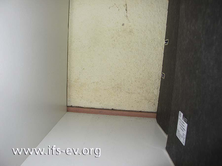 Wegen Kondenswasserbildung befinden sich Schimmelstrukturen an der Außenwand hinter Ordnern im offenen Regal.