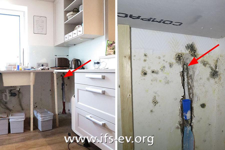 Die Schadenstelle an der Außenwand in der Küche: Um die Leckagestelle herum hat sich Schimmel gebildet.