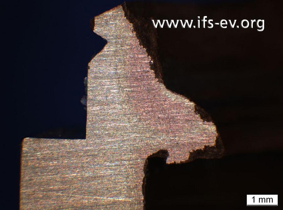 Die mikroskopische Aufnahme des Außengewindes zeigt, wie weit die Entzinkung in das Material hineinreicht.