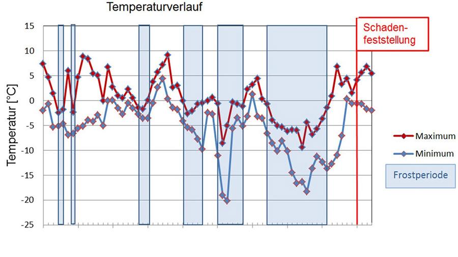 Die Temperaturrecherche zeigt mehrere Frostperioden vor der Schadenfeststellung. Die Grafik basiert auf Messdaten des DWD.