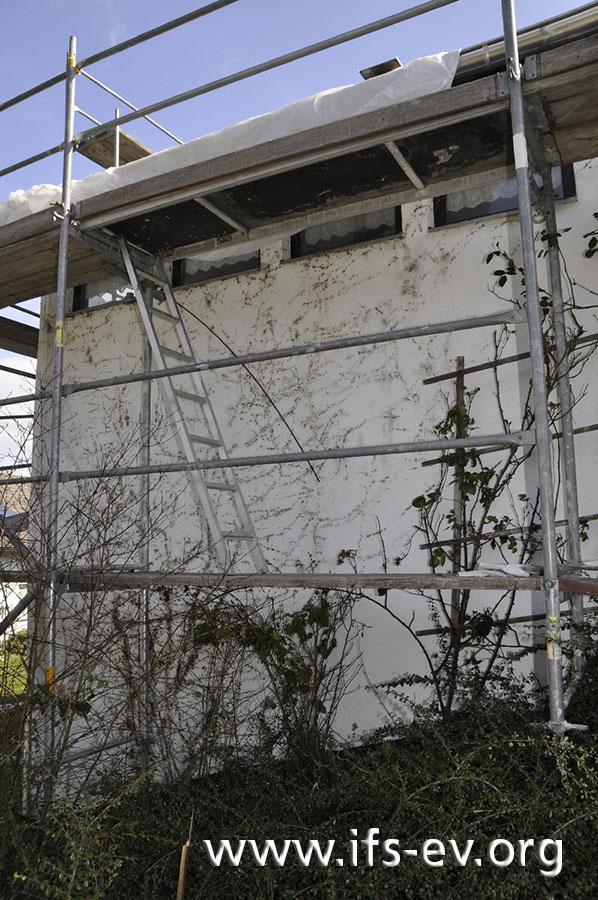 An der Fassade unterhalb des Schadenschwerpunkts sind Spuren von üppigem Efeubewuchs zu sehen.