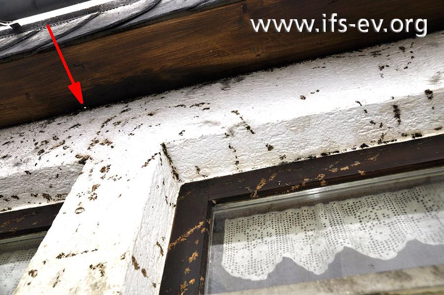 Der Dachüberstand von unten: In der Holzverkleidung ist ein kleines Loch mit Brandspuren erkennbar.