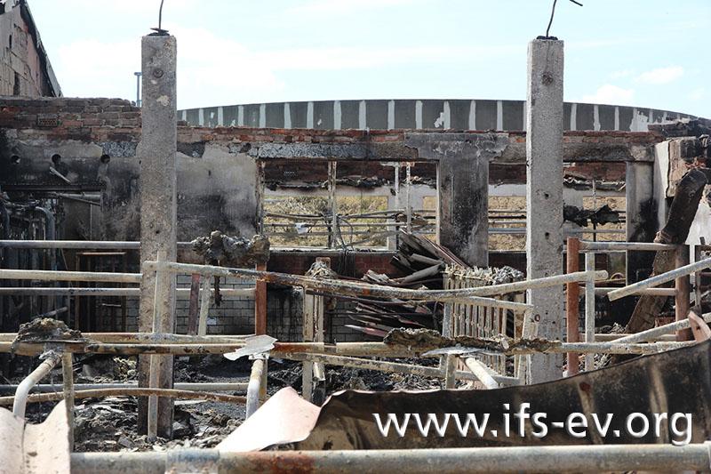 Blick in eines der zerstörten Stallgebäude