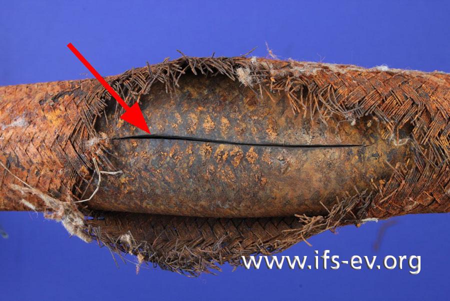 Das Geflecht ist über etwa acht Zentimeter aufgebrochen und der darunter liegende Innenschlauch geplatzt.
