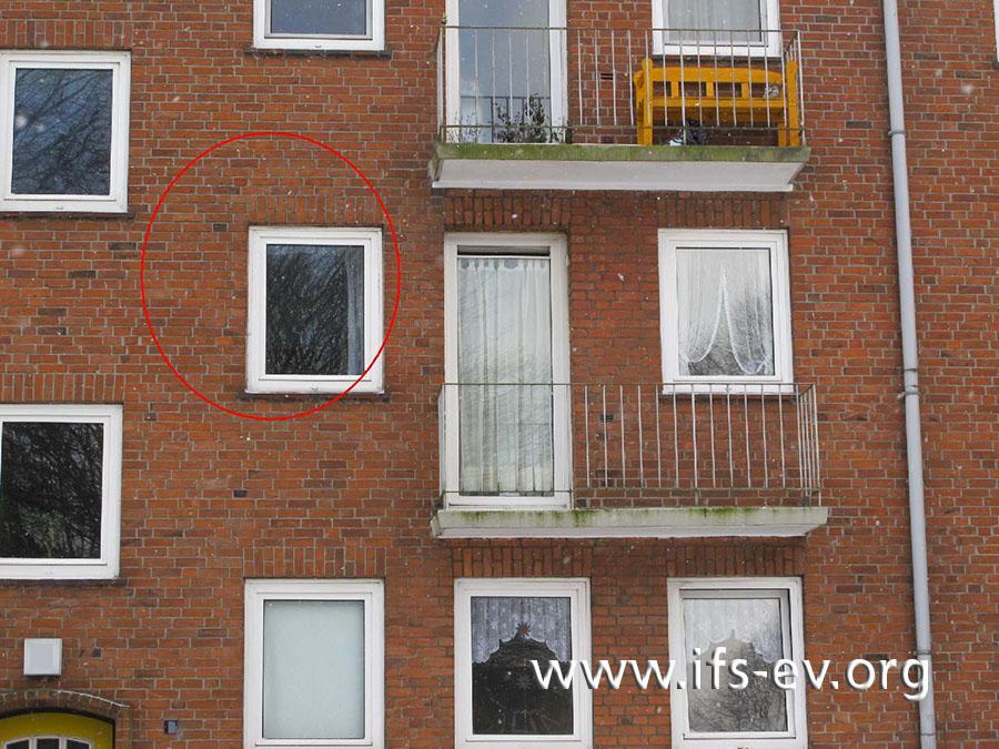 Der im ersten Bild gezeigte Bereich ist auf dieser Außenaufnahme markiert.