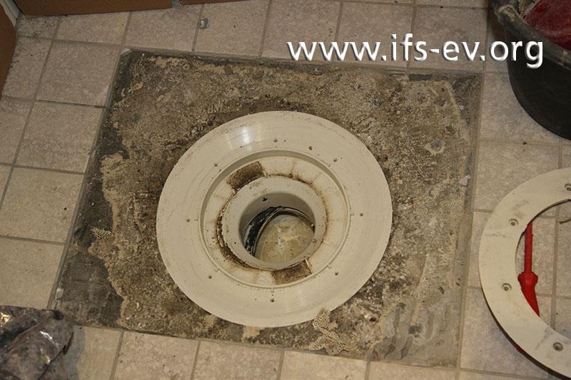 Im Bodenablauf ist eine verrutschte Gummidichtung zu erkennen.