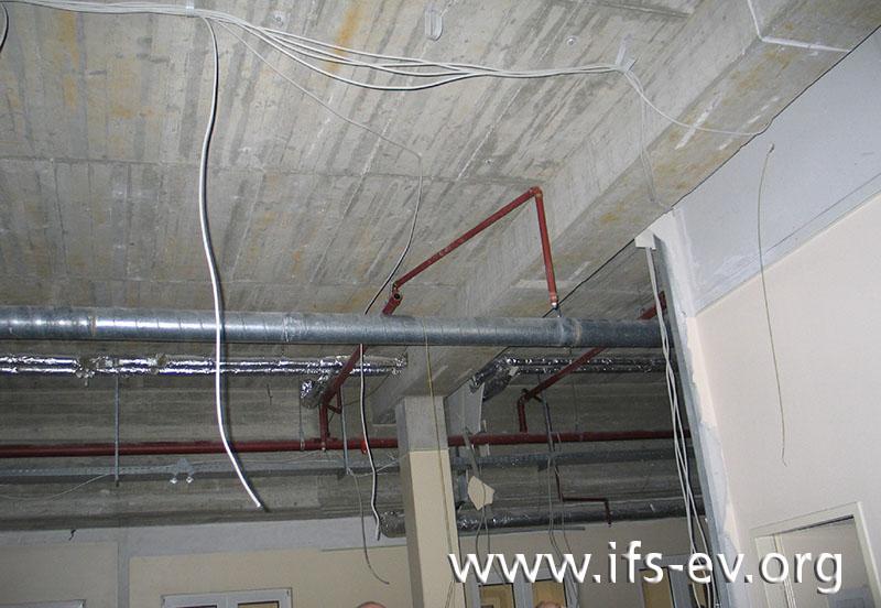 Ausgehend von einer Hauptversorgungsleitung verlaufen unter der Decke die parallelen Leitungsstränge der Sprinkleranlage.