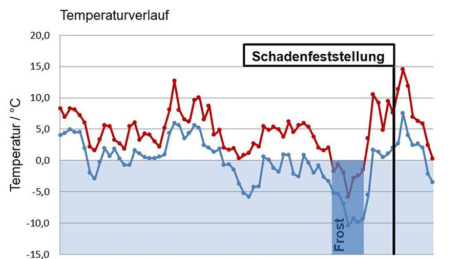 Der Temperaturverlauf, gemessen in der Nähe des Schadenobjektes, zeigt Frost vor der Schadenentdeckung. Quelle: Deutscher Wetterdienst, Temperaturdaten in Grafik überführt