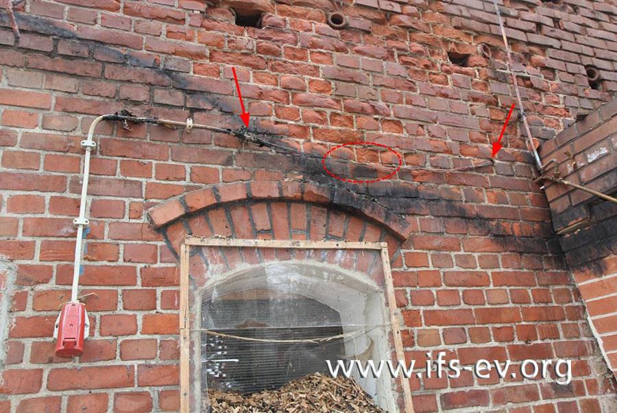 Zwischen den Pfeilen ist die Isolierung der Leitung verbrannt; an der mittig markierten Stelle werden später bei der Laboruntersuchung Schmelzspuren gefunden.
