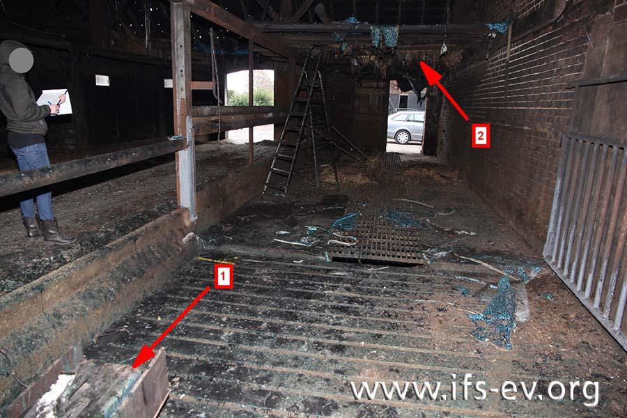 Beim Blick vom Gatter durch den Stall in Richtung Hof sind das Schweißgerät (1) zu sehen und eine Konstruktion aus Hölzern und Kunststoffplane oberhalb der Stellplätze der Tiere. Das dort zur Wärmedämmung vorhandene Stroh ist gut erhalten (2).