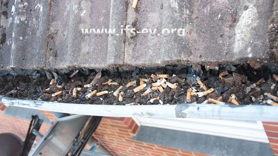 Auch ein Blick in die Dachrinne unterhalb des Fensters verrät, dass der Mieter kein schwacher Raucher war.