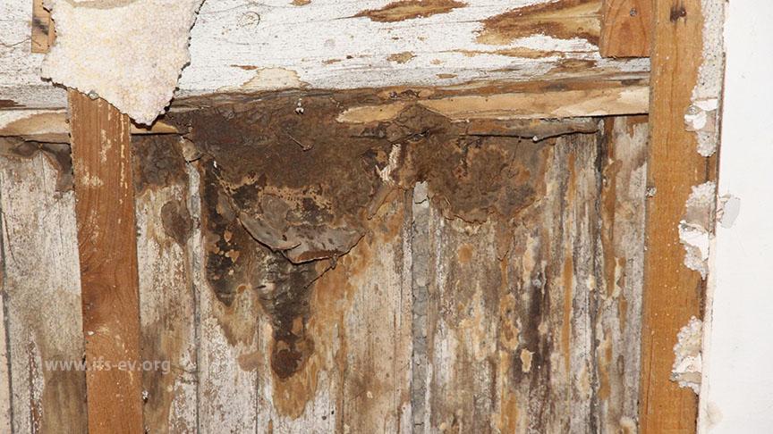 Das Holz im Fußboden zeigt erhebliche Fäulnisschäden.